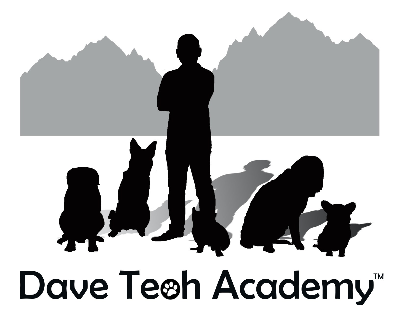 DAVE TEOH's ACADEMY